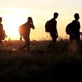 Người tị nạn ào tới, quân đội Hungary huy động lực lượng dự bị