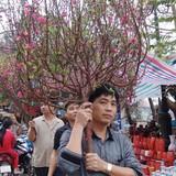 Chủ tịch Hà Nội: Cấm mọi hình thức tặng quà Tết cho cấp trên