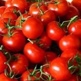 Crimea tiêu hủy 5 tấn nông phẩm nguồn gốc Thổ Nhĩ Kỳ