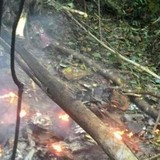 Rơi trực thăng ở Malaysia, 6 người chết