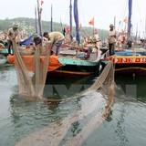 Việt Nam kiên quyết phản đối việc cấm đánh bắt cá của Trung Quốc