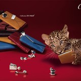 Cartier: Hiệu trang sức yêu thích của các ông hoàng, bà chúa