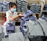 Hàng dệt may Việt Nam chiếm lĩnh 1/4 thị trường Hàn Quốc