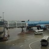 Hàng không đảo lộn lịch bay vì bão số 1