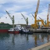 Phụ phí cảng biển: Đến hẹn lại tăng!