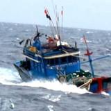 Mưa bão tại Quảng Ninh: Bảo Việt ước tính bồi thường trên 4 tỷ đồng cho khách hàng