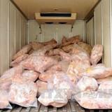 Điều tra toàn diện việc đùi gà Mỹ giá 20.000 đồng/kg