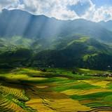 Mù Cang Chải đẹp rực rỡ trên website du lịch hàng đầu của Mỹ