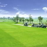 """Địa ốc 24h: Hết tượng đài, đến lượt đề xuất xây sân golf """"đổ bộ"""""""