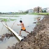 Chưa thể báo cáo việc san lấp kênh rạch tại TP.HCM