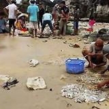 Hải sâm dạt dày đặc trên bãi biển Phú Quốc