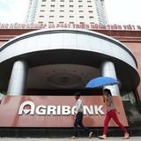 Cho vay sai quy định, Agribank mất 966 tỷ đồng