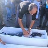 Chuyên gia Nhật và ngư dân Bình Định ra biển câu cá ngừ