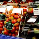 Cà chua đen ồ ạt vào siêu thị