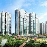 Nhu cầu tìm mua nhà đất trực tuyến tăng mạnh