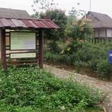 Cận cảnh hoang tàn tại dự án nghìn tỷ ở Hà Nội