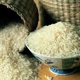 Đừng sốc vì gạo có thạch tín