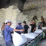 Mừng lo cho hạt gạo Việt Nam xuất khẩu