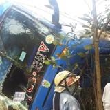 Xe khách lao xuống vực, hơn 40 người thoát chết