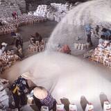 Thái Lan xả kho gạo ra thị trường thế giới: Có ảnh hưởng tới Việt Nam?