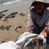 """Formosa nhập 400 tấn hóa chất: Bộ Công thương """"đá"""" trách nhiệm cho Bộ Tài nguyên-môi trường!?"""