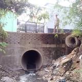 Lấp suối xây nhà trọ không phép