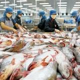 Thượng viện Mỹ bác bỏ chương trình giám sát cá da trơn Việt Nam
