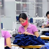Doanh nghiệp thích Hiệp định thương mại tự do Việt Nam – EU hơn TPP