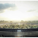 Apple lập công ty con bán năng lượng mặt trời