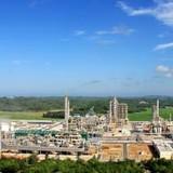 Lọc dầu Dung Quất xin xuất khẩu: Chuyện lạ