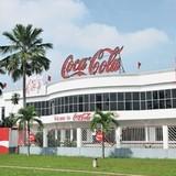 Dừng lưu thông 13 sản phẩm Coca Cola: Tiết lộ bất ngờ từ Cục trưởng Cục An toàn thực phẩm