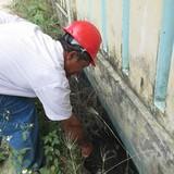 Một công ty xả nước thải hôi thối, đầy dòi ra môi trường