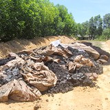 Mẫu chất thải Formosa chôn ở trang trại có 2 chỉ tiêu vượt ngưỡng