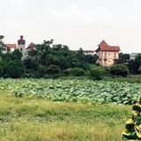 Phó Thủ tướng yêu cầu làm rõ vụ biến gần 1.000m2 đất công thành đất tư