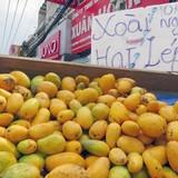 """""""Xoài mút"""" làm bằng nilon thực chất là xoài thật nhập khẩu từ Trung Quốc"""