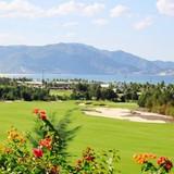 Đẳng cấp sân golf đẹp Top 3 châu Á - FLC Quy Nhơn Golf Links