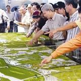 Dự án thành phố bên sông Hồng: Đừng mơ như sông Hàn