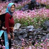 Du lịch Tây Bắc: Bài học thành công từ Nepal