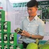Chàng công nhân 8x đưa mãng cầu xiêm Lai Vung xuất ngoại