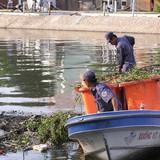TP.HCM mỗi tháng chi khoảng 200 tỷ đồng để thu gom, xử lý rác
