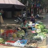 Hà Nội: Giá thực phẩm mùng 2 Tết tăng 50%, rau xanh hét giá gấp đôi