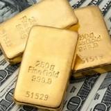 Long An: Làm rõ vụ vận chuyển lượng lớn ngoại tệ và vàng bằng ô tô