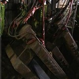 Vỡ đường ống dẫn dầu, 3 công nhân bị bỏng nặng