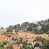 """Xây khách sạn ở núi Sơn Trà: """"Không phù hợp quy hoạch thì phải dừng"""""""