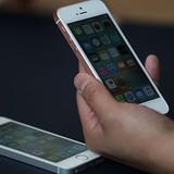 Apple bắt đầu quá trình sản xuất iPhone ở Ấn Độ