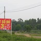 """Khốn khổ vì mua đất Ba Vì """"đón đầu"""" quy hoạch"""