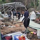 Đà Nẵng: Đình chỉ các hoạt động xâm hại ở rừng Sơn Trà