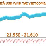 Sáng 6/4: Tỷ giá USD/VND đi ngang
