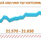 Tỷ giá USD/VND đi ngang 4 phiên liên tiếp