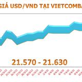 """Tỷ giá USD/VND không """"nhúc nhích"""" 5 phiên liền"""